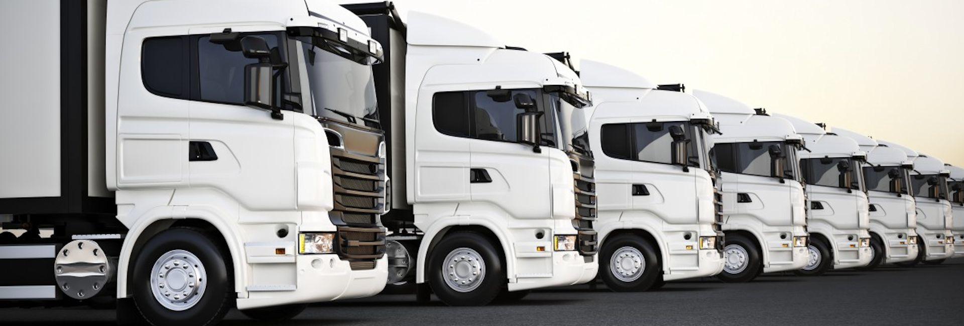 flotta-camion-b